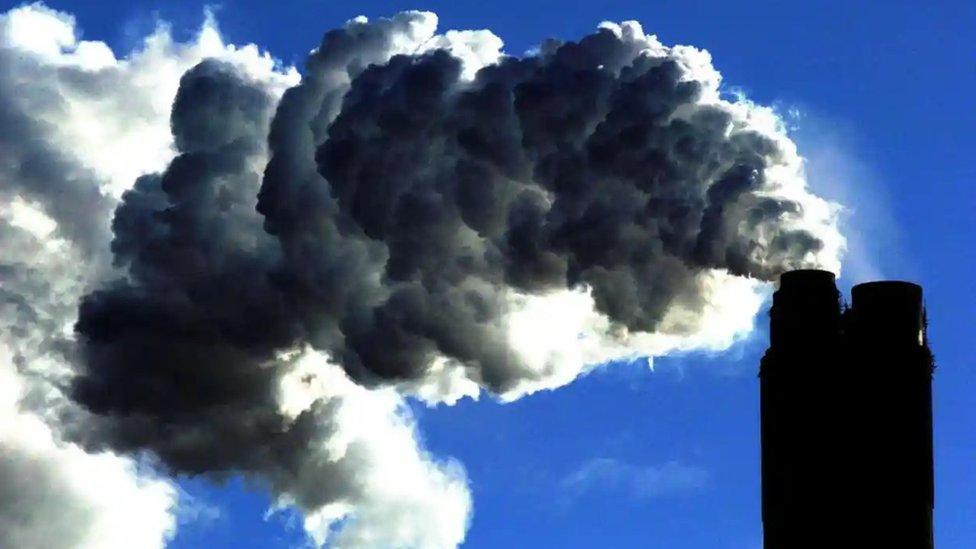 karbon salımı