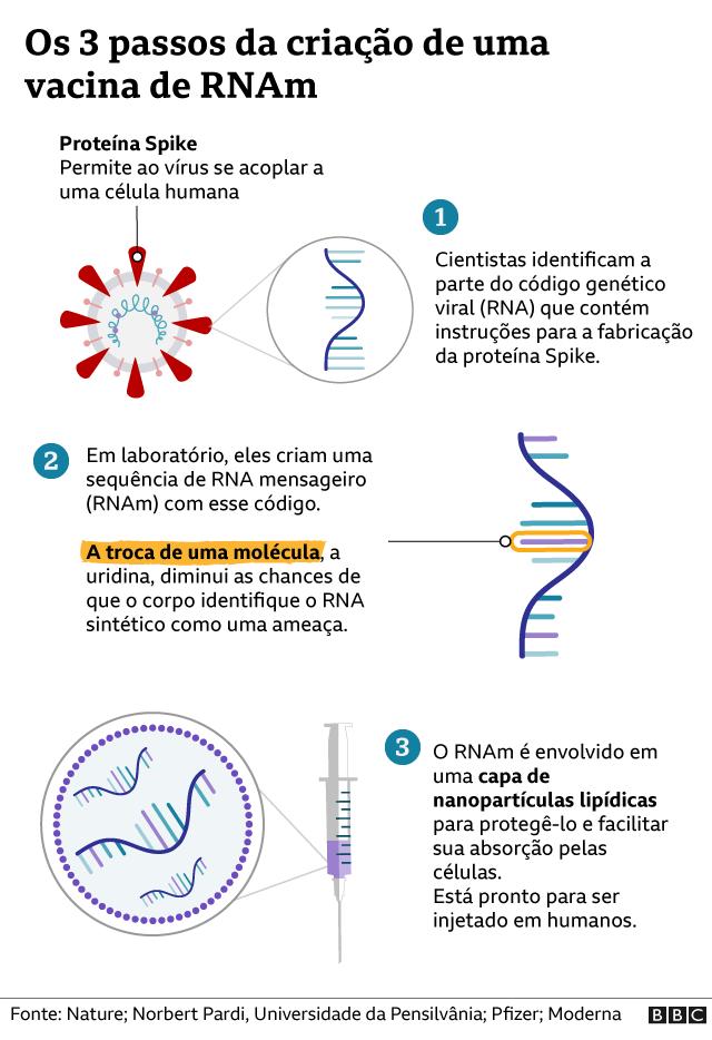 Gráfico de como é feita a vacina