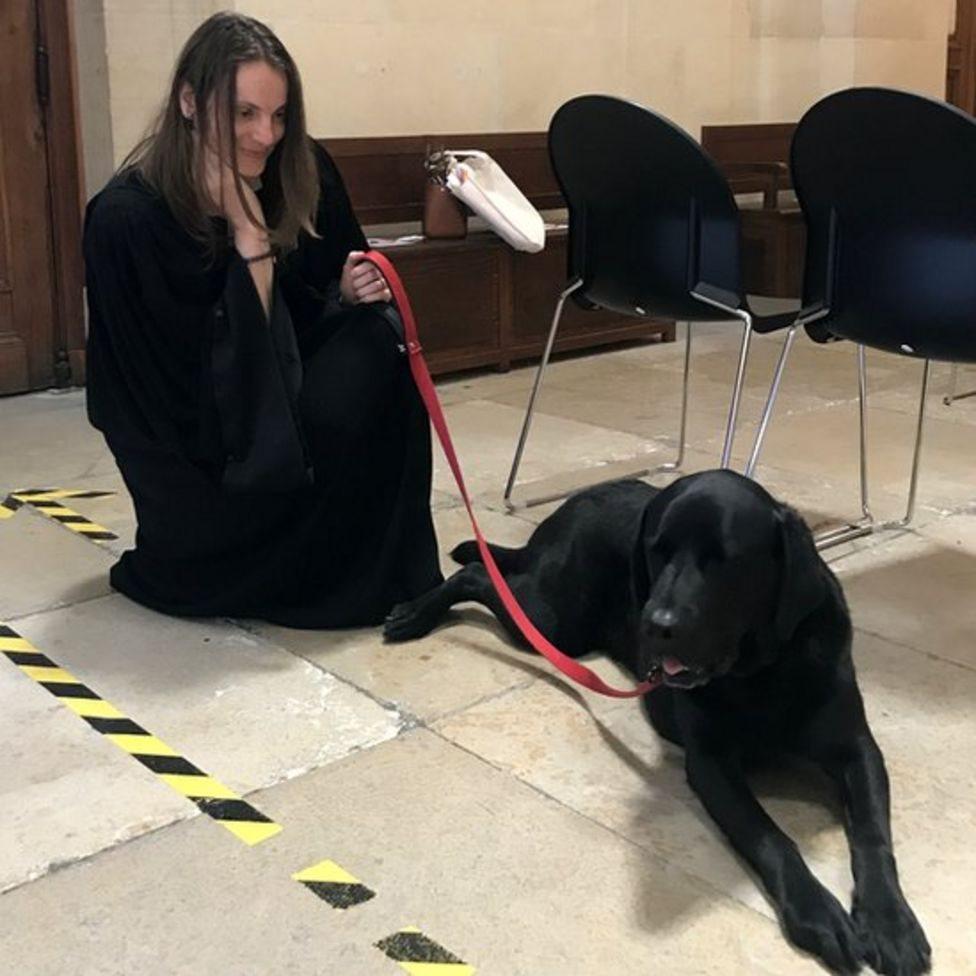 الكلب لول رفقة محامية