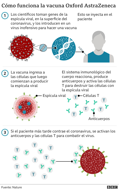 como funciona la vacuna AstraZeneca