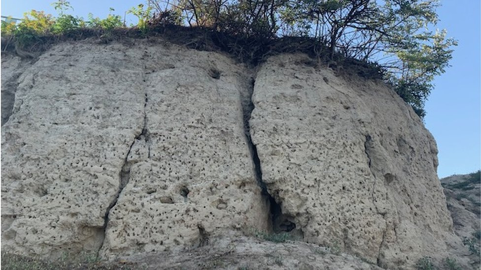 Vinča Belo Brdo