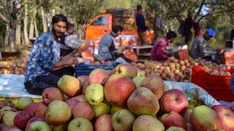 Ishrana i klimatske promene: Fleksibilna dijeta može da pomogne svetu