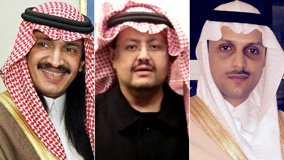 Saudi Arabia's missing princes