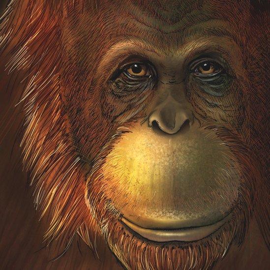 Reconstrucción artística del 'Gigantopithecus blacki'