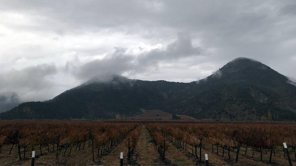 Las viñas y plantaciones adornan el modesto camino entre estos pueblos.