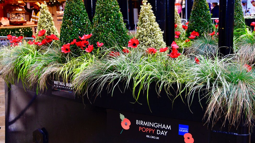 Poppies planted in protection barriers