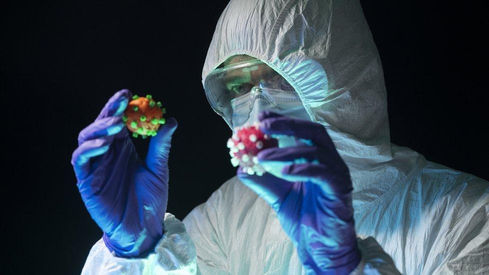 Um médico segurando dois modelos do vírus