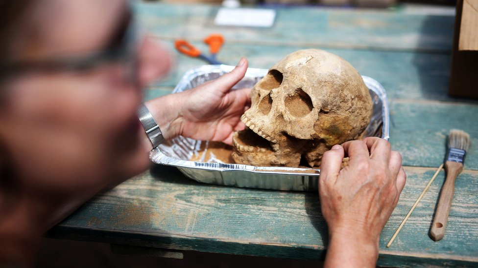 S anthropologist and pathologist, Sherry Fox shows a skull discovered at the excavation site of the first Philistine cemetery ever found on June 28, 2016
