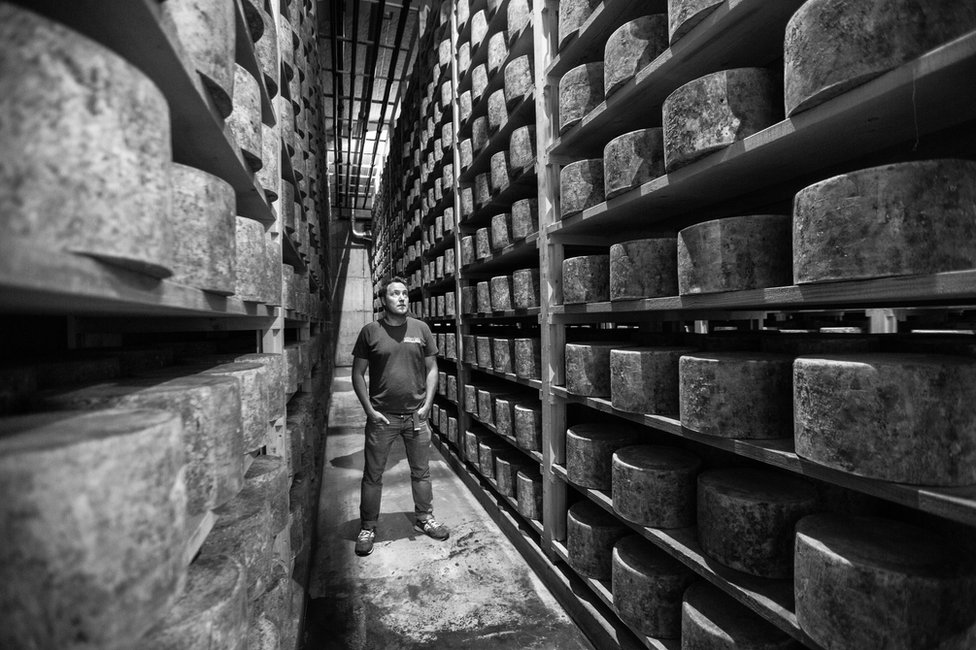 A man stands in a cheese storage warehouse