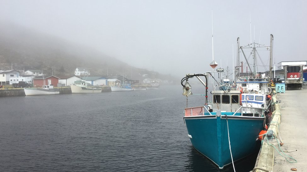 Boats in Petty Harbour, one of Newfoundland and Labrador's oldest fishing communities