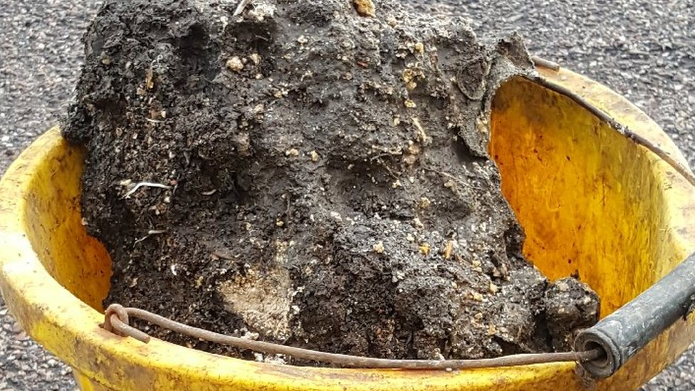 First look at the fatberg