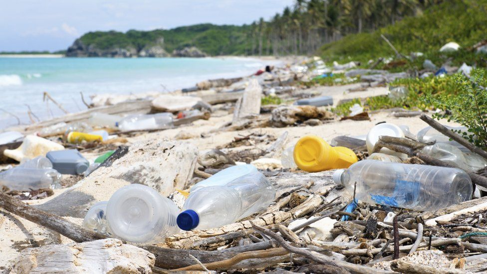 نفايات من البلاستيك تلوث أحد الشواطئ