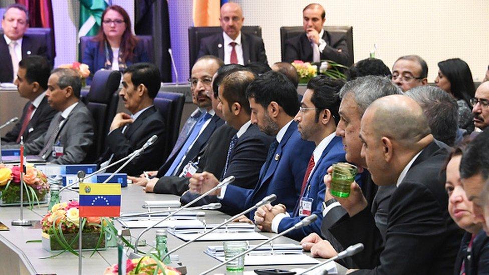 Reunión de ministros de Energía de la OPEP en Viena