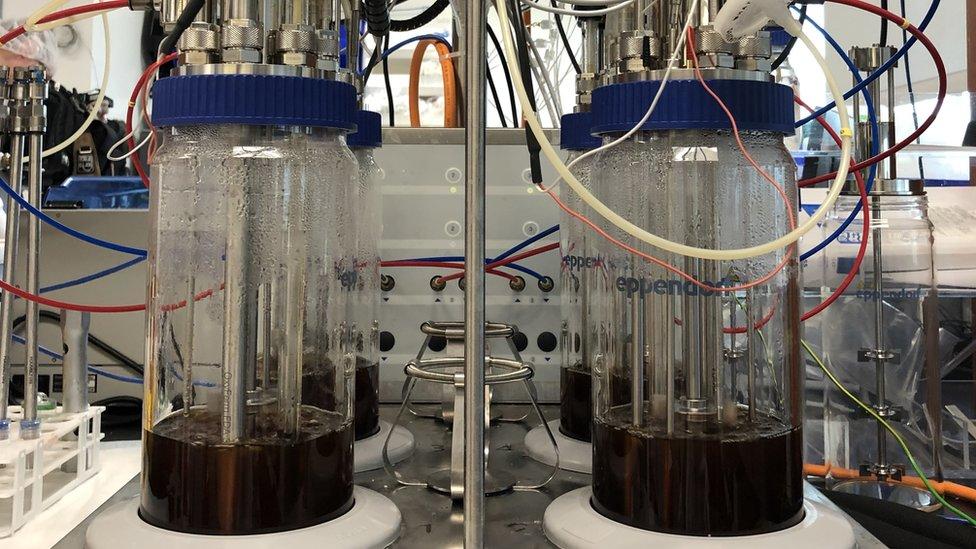 Recipientes de fermentación en el laboratorio Inovo cultivan bacteria para proveer el principal ingrediente de la vacuna