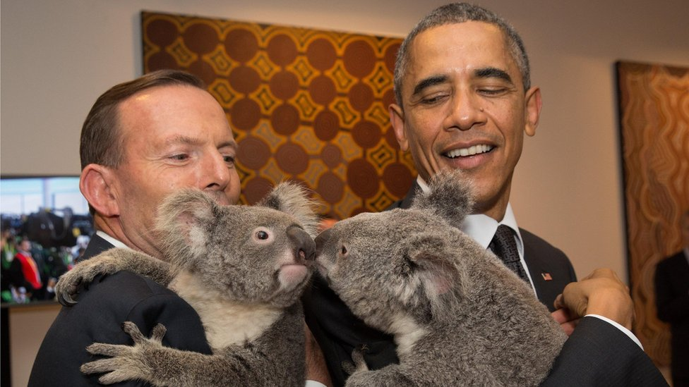 President Obama holding a koala.