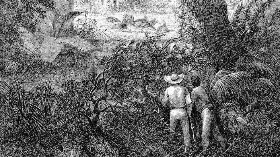 Una ilustración de caza de guajolotes silvestres en México