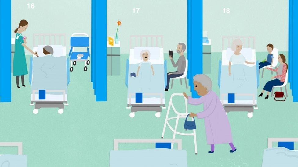 Hospital ward graphic