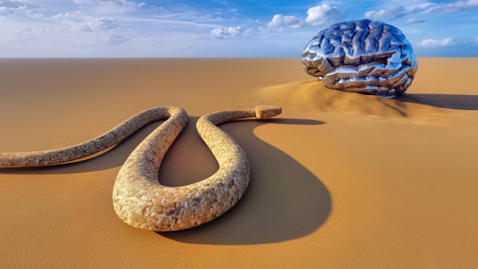 Serpiente cerca de un cerebro