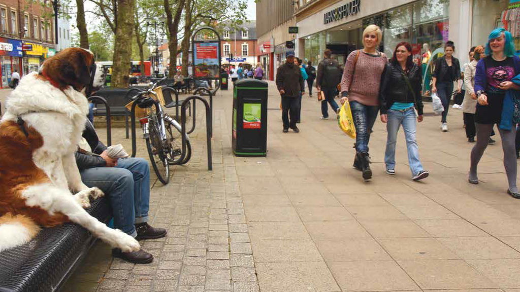 Passers-by look amused at the sight of a dog sitting in an upright position on a bench in Peterborough city centre.