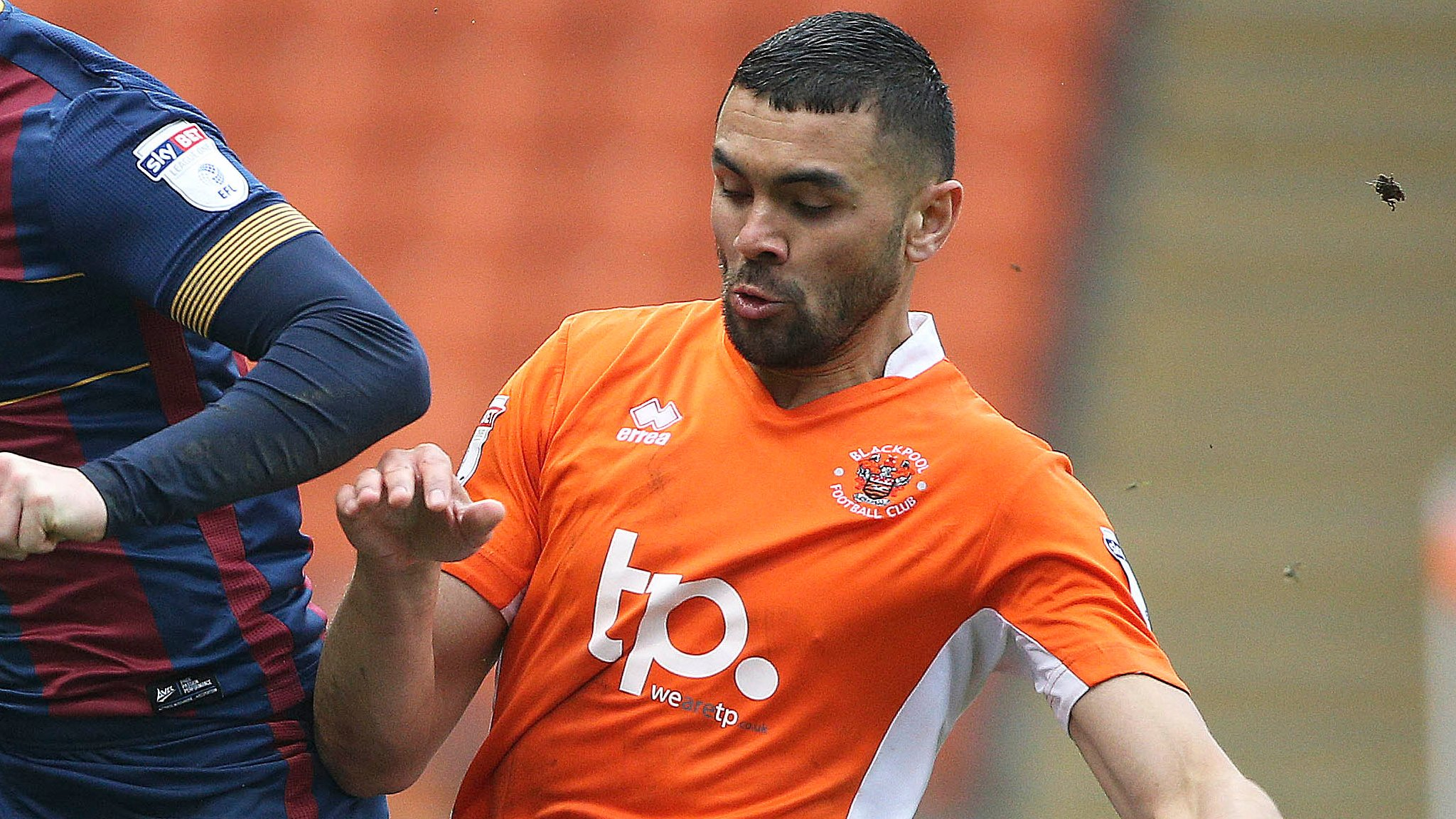 Colin Daniel: Peterborough United to sign Blackpool full-back