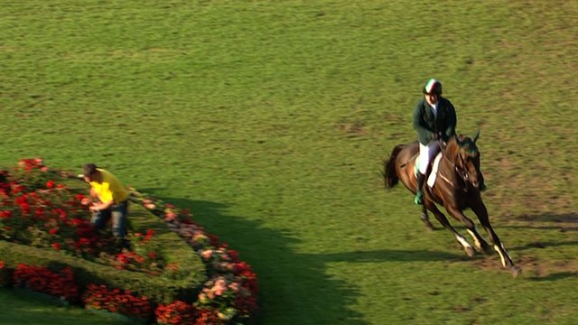 Ireland showjumpers set to miss out on Rio Olympics