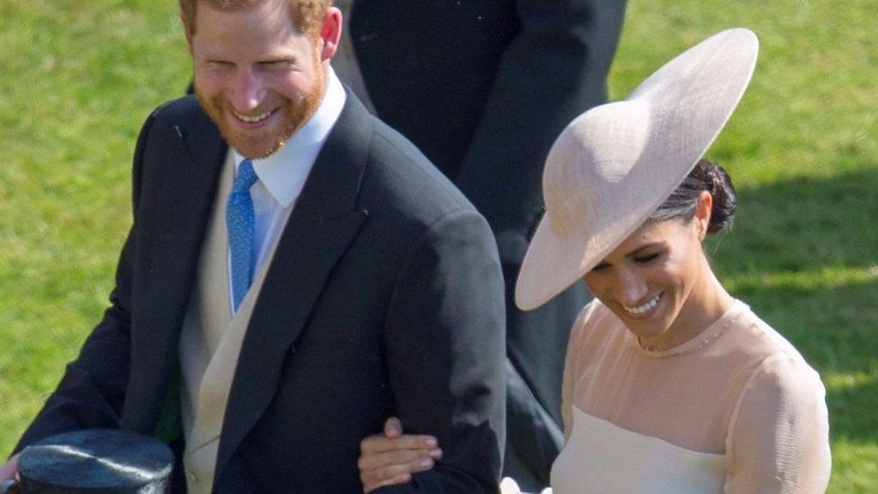 Prince Harry's interrupted by bee at newlyweds' first official event
