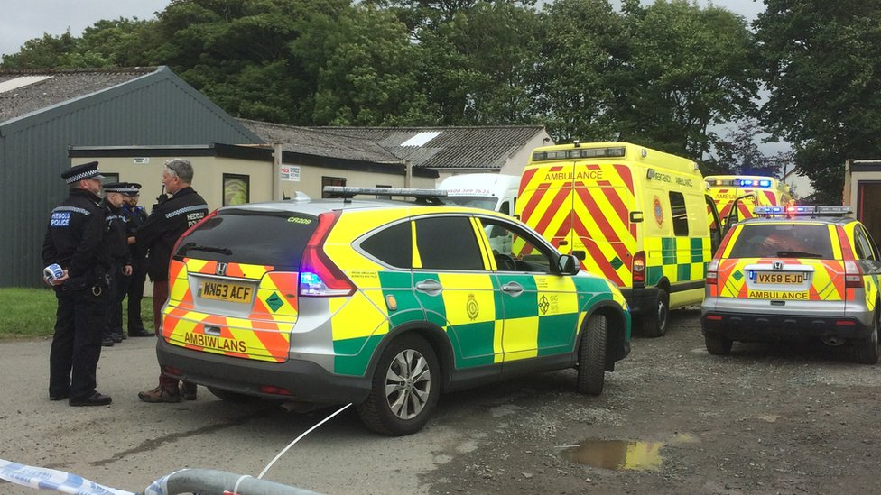 Six people injured by loose horse at Pembrokeshire Show