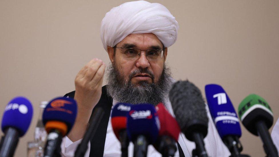 Taliban temsilcisi Shahabuddin Delawar