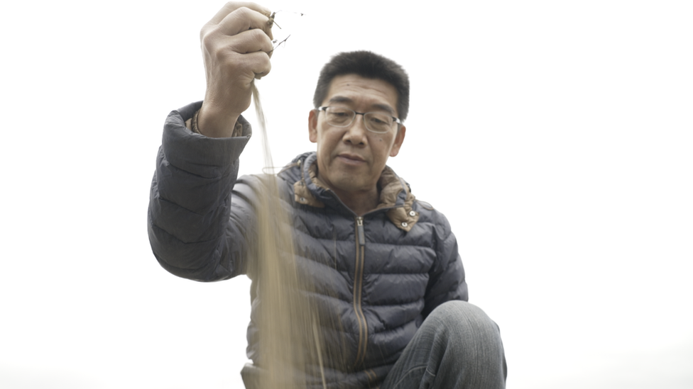 Taiwanese farmer Chuang Cheng-deng pours dry earth through his fingers in his rice field