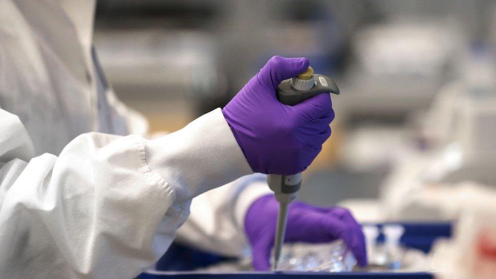 Mãos de pesquisadora