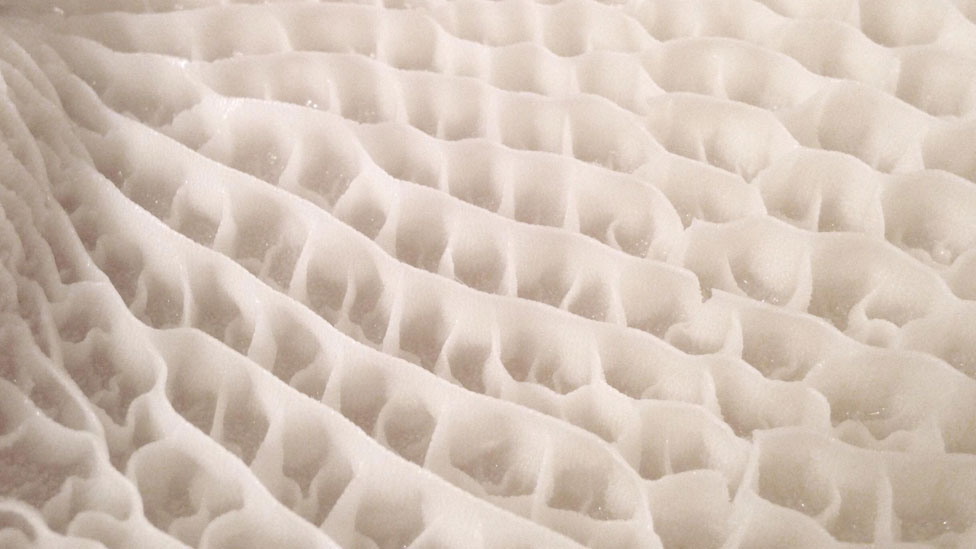 Close up texture of tripe