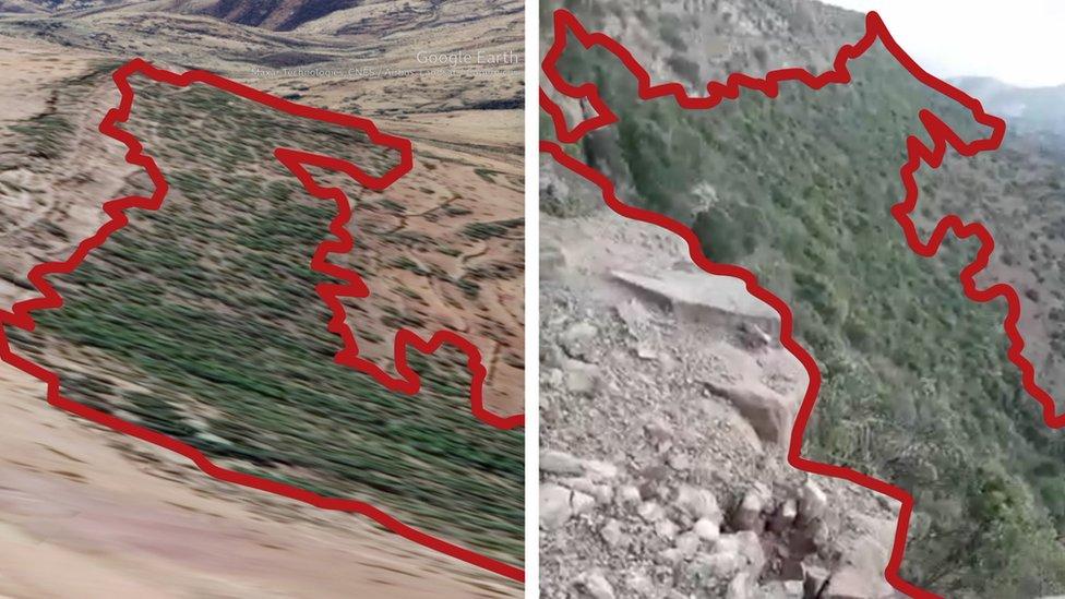 منطقة تغطيها الشجيرات والأعشاب ظهرت في الفيديو طابقت صورة ثلاثية الأبعاد للمنطقة