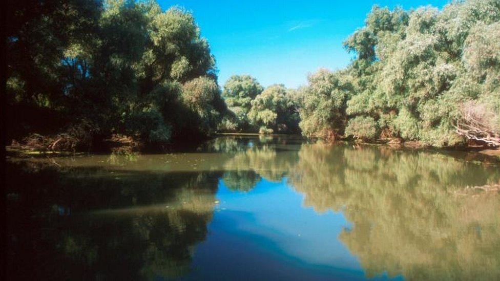 dunav, reka, voda