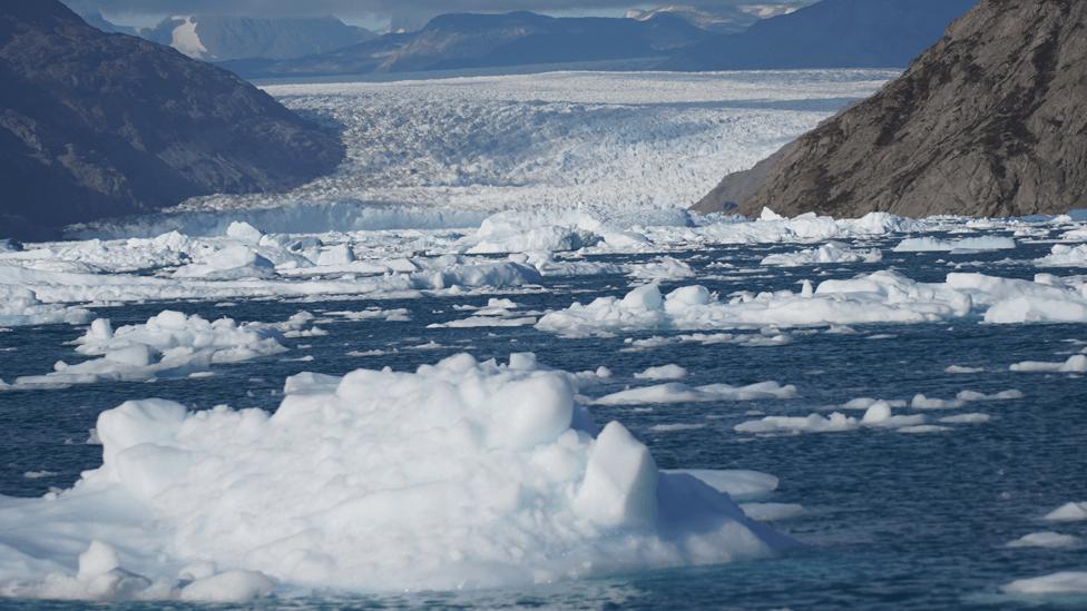 Hielo flotante en Groenlandia