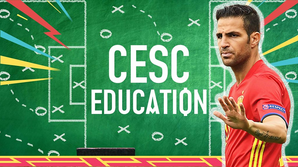 World Cup 2018: Cesc Fabregas' teaches us about Spain squad