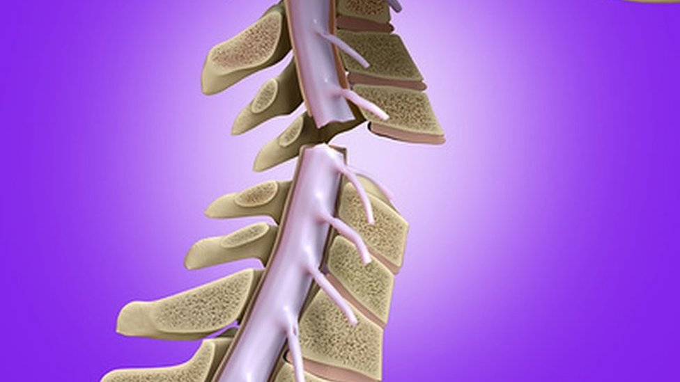 Drug therapy 'restores breathing' after spinal injury