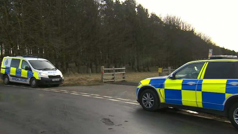 Cumbria Police cordon off wood after gunman spotted