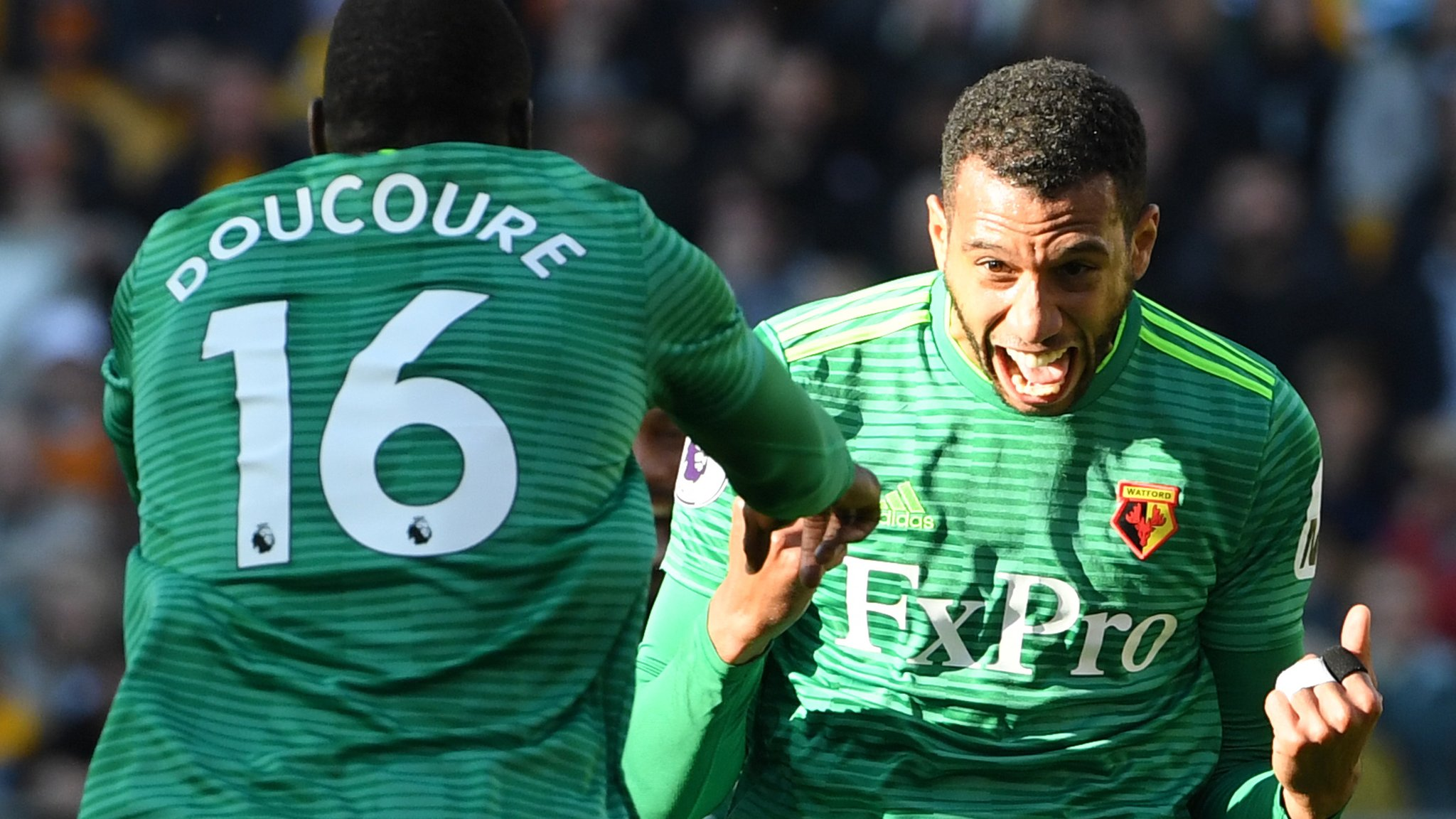 Wolverhampton Wanderers 0-2 Watford: Capoue and Pereyra seal Hornets win