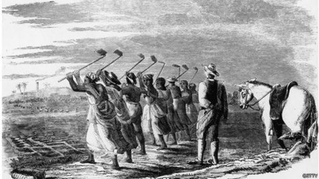 Un dibujo muestra a esclavos trabajando la tierra mientras son supervisados por un hombre.