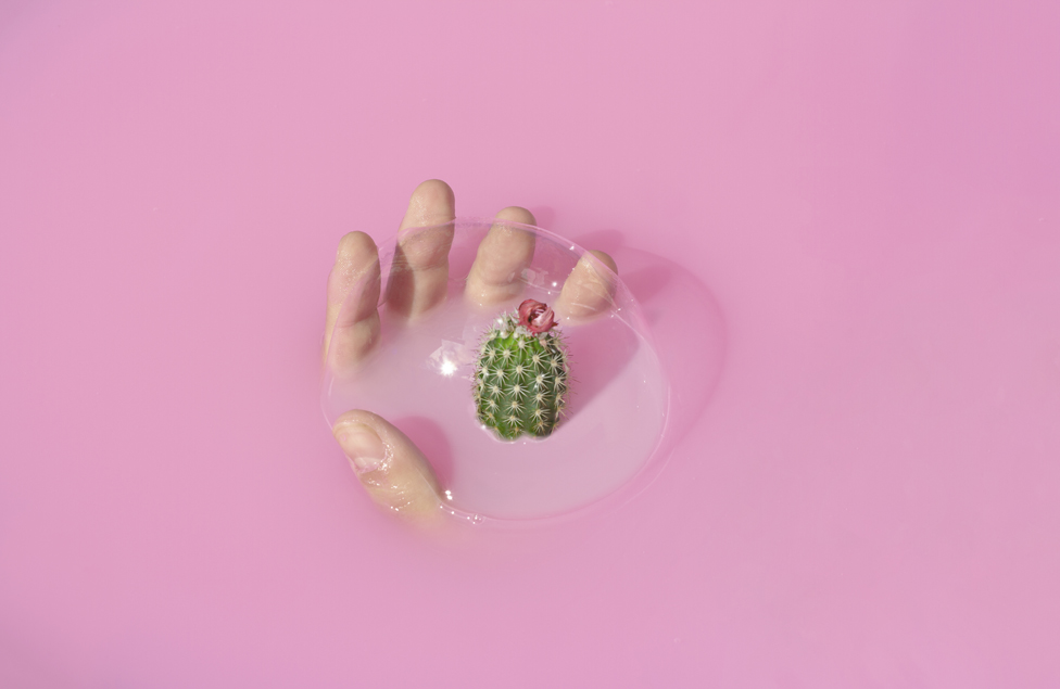 Mehur, ruka i kaktus