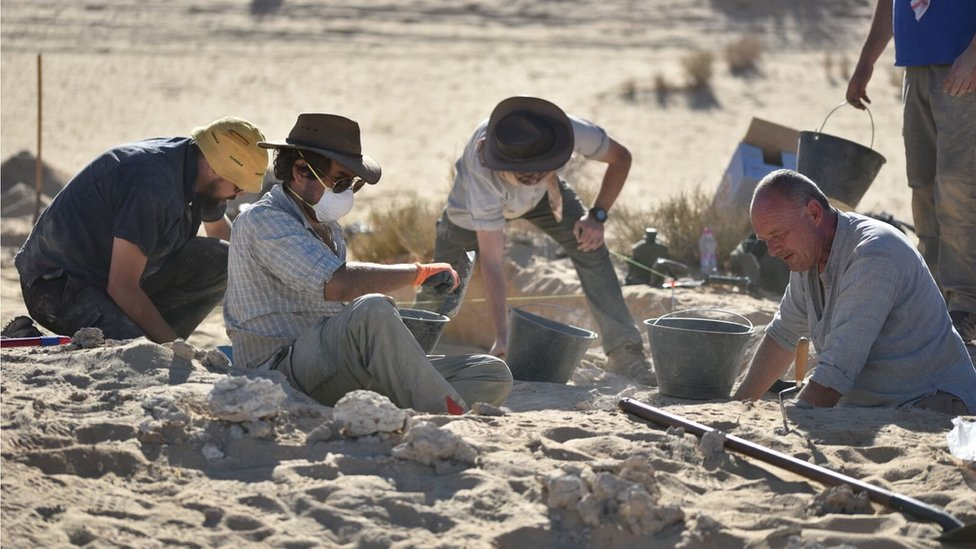 Researchers excavating in the sands of Al Wusta