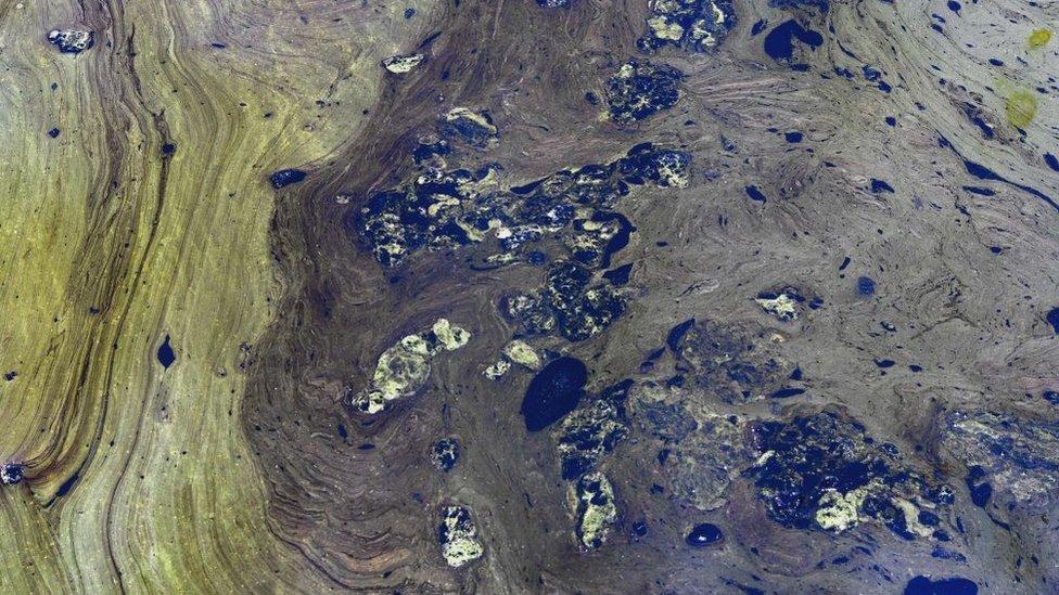 Los derrames de petroleo y la presencia de algas estan afectando gravemente al lago.
