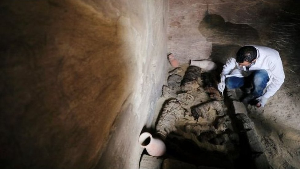 一名埃及考古學家正在烏瑟卡夫王(King Userkaf)金字塔旁的古墓中整理木乃伊貓