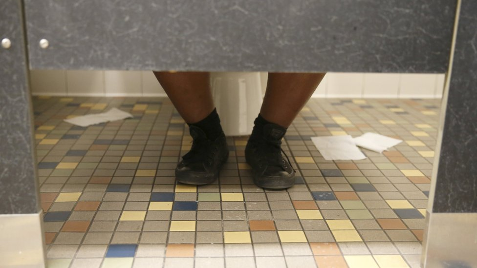A student sits on the toilet in the first gender-neutral restroom in the Los Angeles school district at Santee Education Complex high school in Los Angeles, California, U.S., April 18, 2