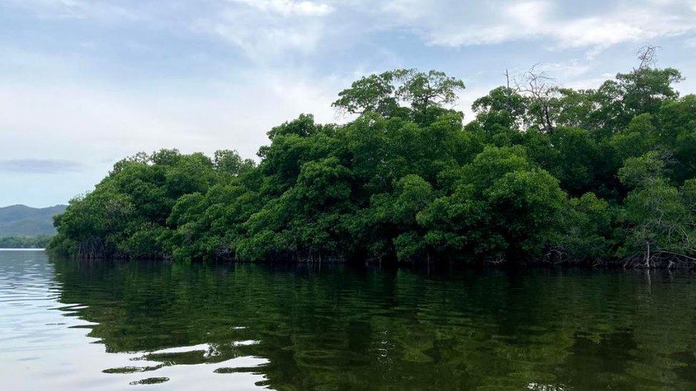 A lagoa em Puerto Escondido