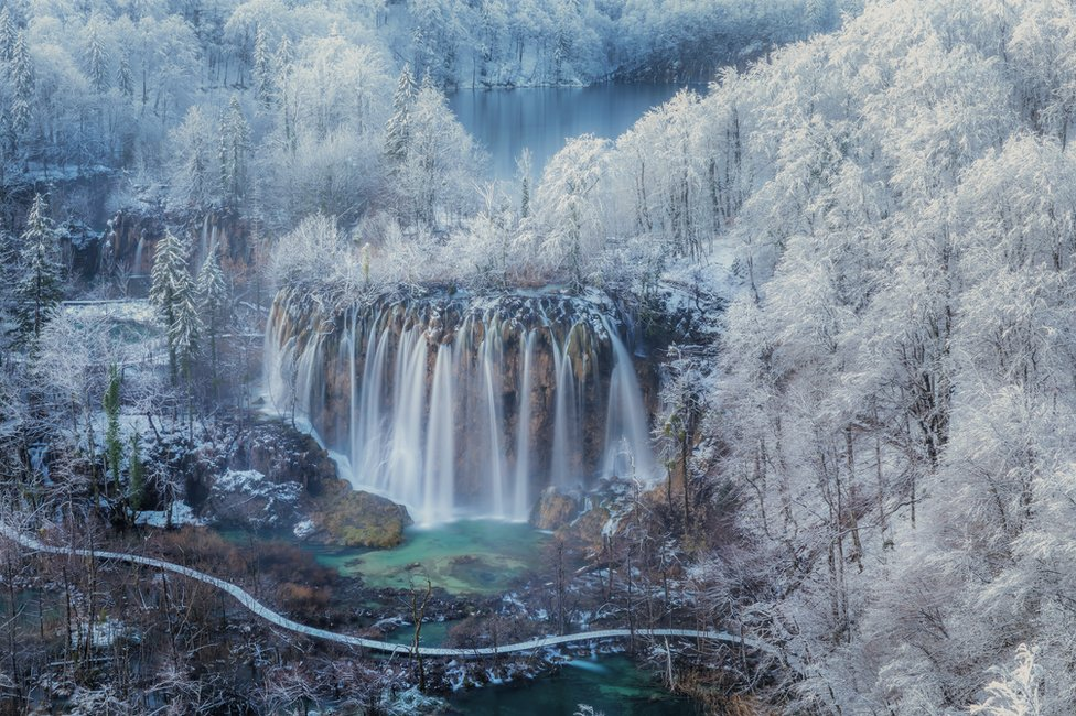 A snow-covered forest and a waterfall