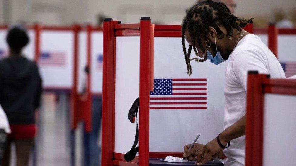 Votante en EE.UU.