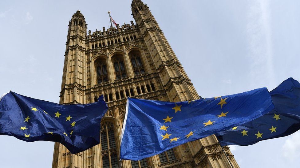 Houses of Parliament with EU flags