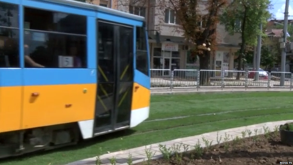 A tram running on the grass-covered tracks