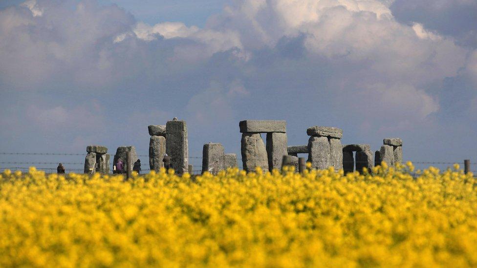Stonehenge seen across a field of flowers